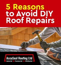 5 Reasons to Avoid DIY Roof Repairs