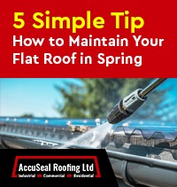 How to Maintain Your Flat Roof in Spring (5 Simple Tips)