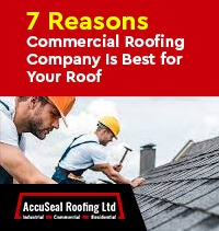 7 Reasons a Commercial Roofing Company Is Best for Your Roof